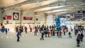 22nd Annual Winter Ice Palace