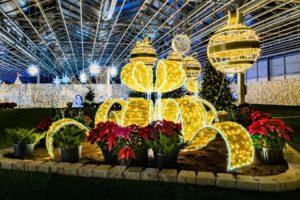 Glow Gardens Abbotsford