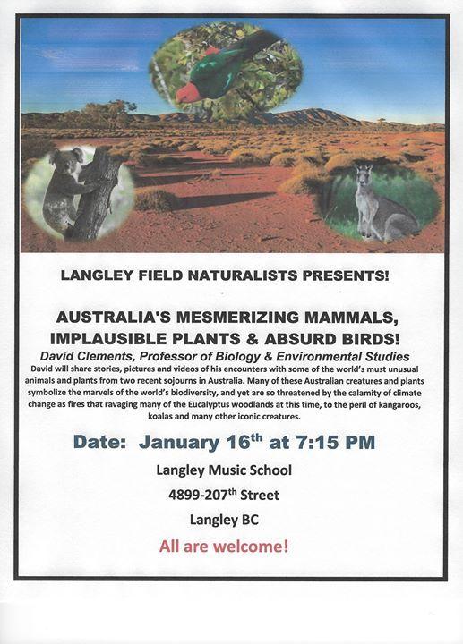 Australia's Mesmerizing Mammals, Implasuible Plants, & Birds