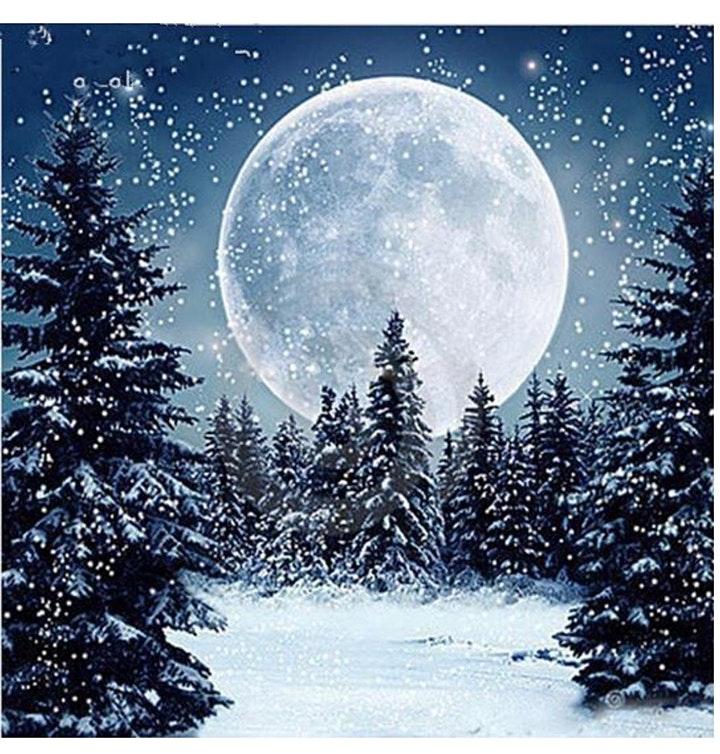Winter Moon - Paint & Sip