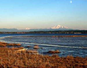 Mud Bay Delta BC