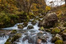 Fraser Valley Creek